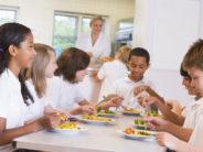 """""""Refezione scolastica"""": per il Consiglio di Stato è illegittimo il Regolamento comunale che vieta di consumare pasti portati da casa"""