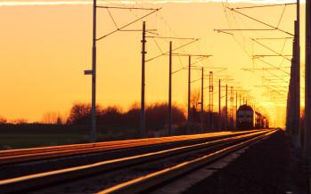 Trasporto scolastico: per la Corte Sicilia non sono applicabili i vincoli che caratterizzano i servizi pubblici a domanda individuale
