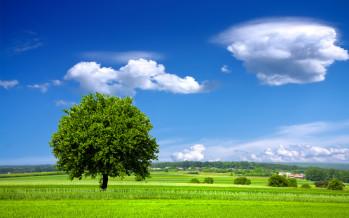 Pulizia e sanificazioni: adottati i criteri ambientali minimi per affidamento servizi e acquisto dei prodotti