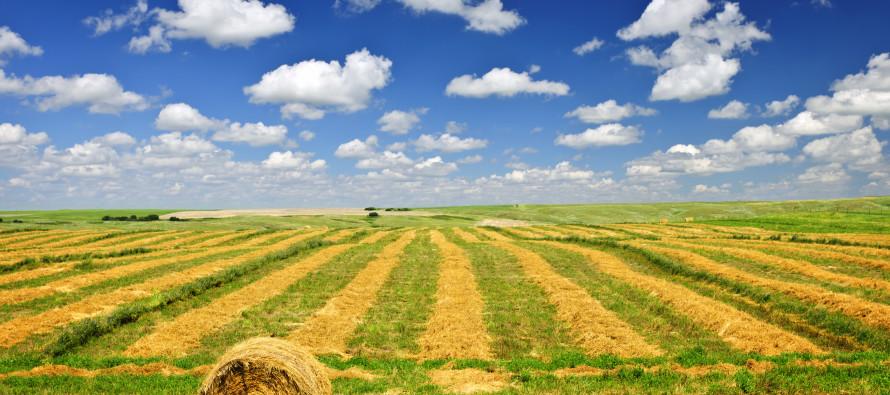 Ici: benefici previsti per i terreni edificabili destinati a fini agricoli