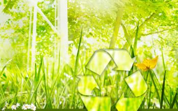 Sostenibilità consumi P.A.: adottati i criteri ambientali minimi relativi all'illuminazione pubblica