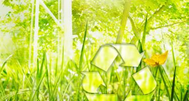 Ministero Ambiente: criteri ambientali minimi per la sostenibilità dei consumi della P.A.