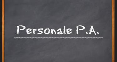 """Amministrazioni provinciali: """"no"""" al conferimento di un incarico da Portavoce"""