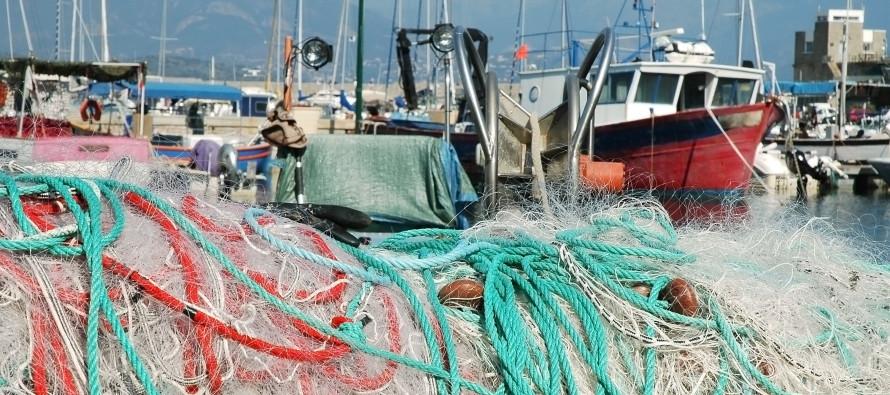 Iva su trasporto tramite imbarcazioni: regime di esenzione in caso di noleggio con conducente
