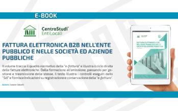 """Novità editoriale – """"Fattura elettronica B2B nell'Ente pubblico e nelle Società ed Aziende pubbliche"""""""
