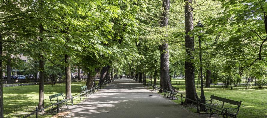 Ente Parco regionale: compensi dei componenti del Consiglio direttivo già Consiglieri comunali
