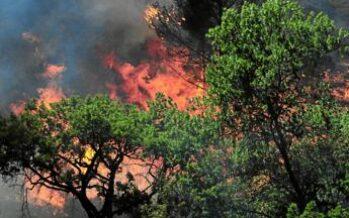 Protezione civile: pubblicato il Decreto per rafforzare le attività di prevenzione, monitoraggio e lotta agli incendi boschivi