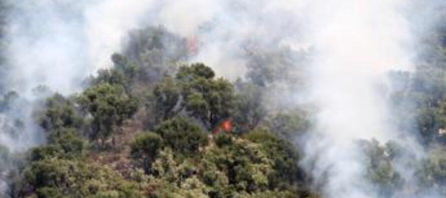 Incendi Italia, da inizio anno bruciati 110mila ettari