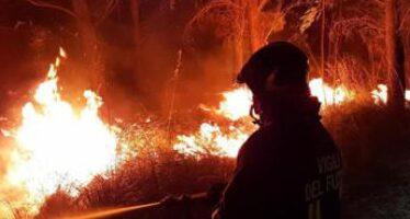 In arrivo il grande caldo, è allerta massima per gli incendi