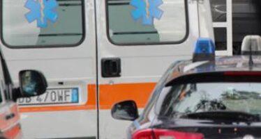 Modena, 89enne muore sbranata da due cani in un cortile