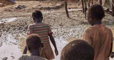 """Vaccino anti-malaria, ok dell'Oms: """"Momento storico"""""""