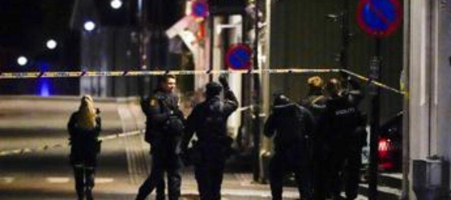 Norvegia, attacco con arco e frecce: diversi morti